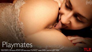 Dezire & Laura V – Playmates