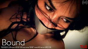 Novi – Bound