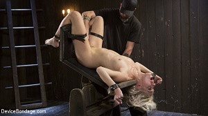 Cadence Lux – The New Bitch