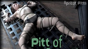 Hard Tied – Apricot Pitts